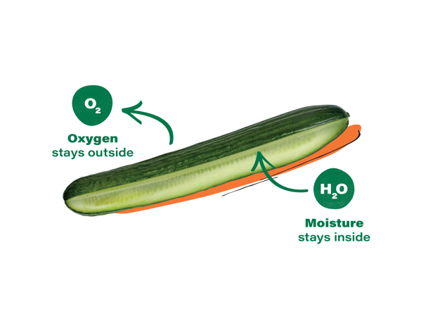 Apeel-Cucumber-Diagrams-2020-V1