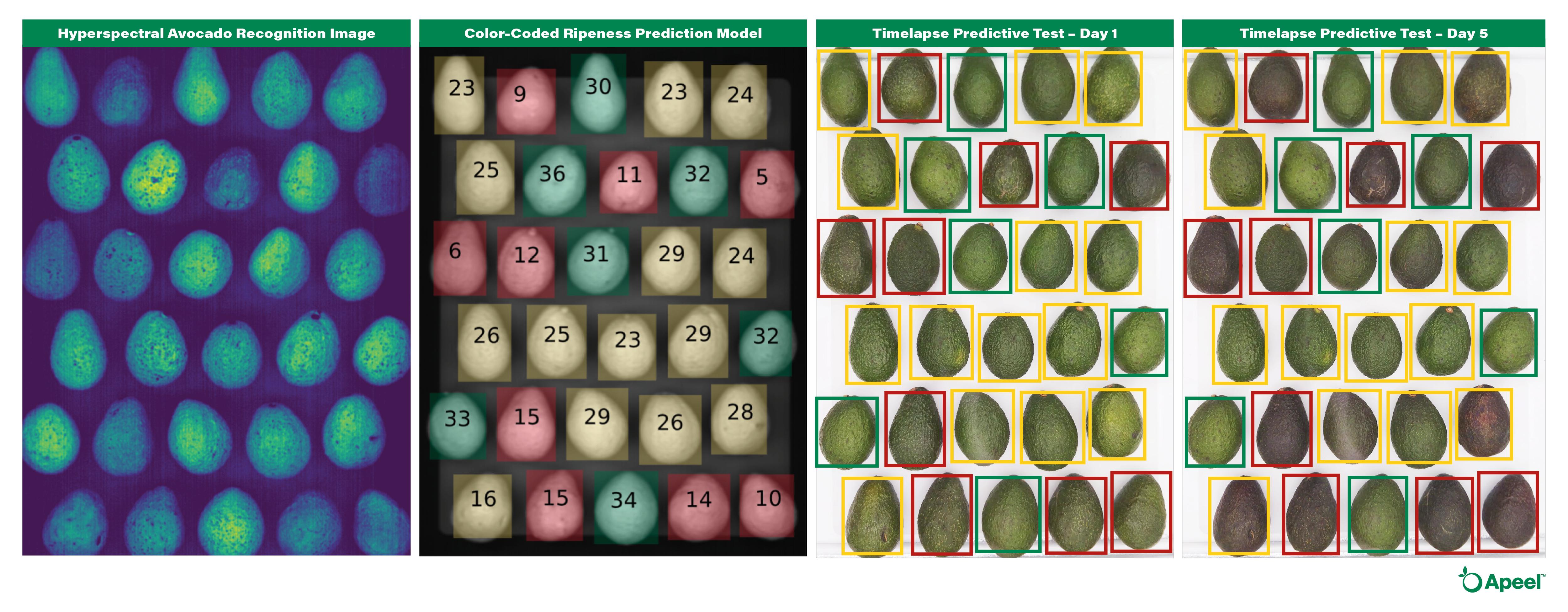 Apeel-ImpactVision-Comparison-for-Blog