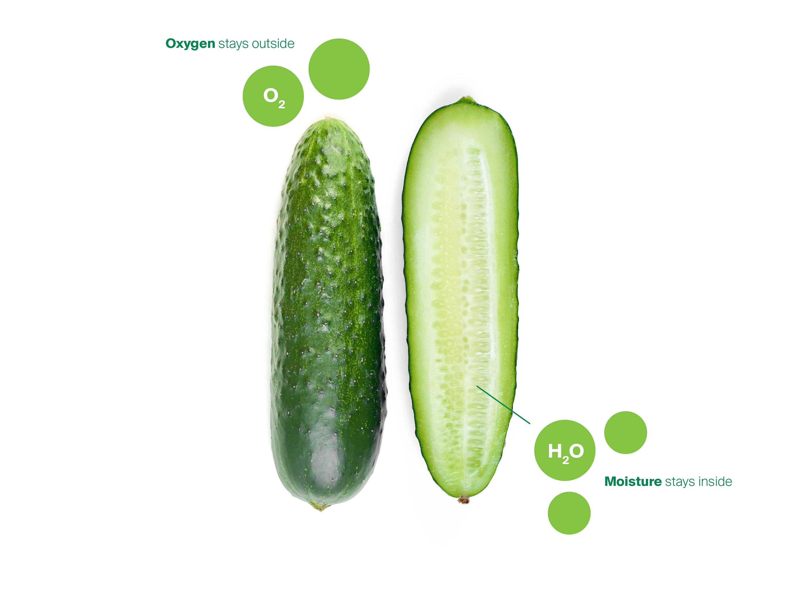 Cucumber-Diagram