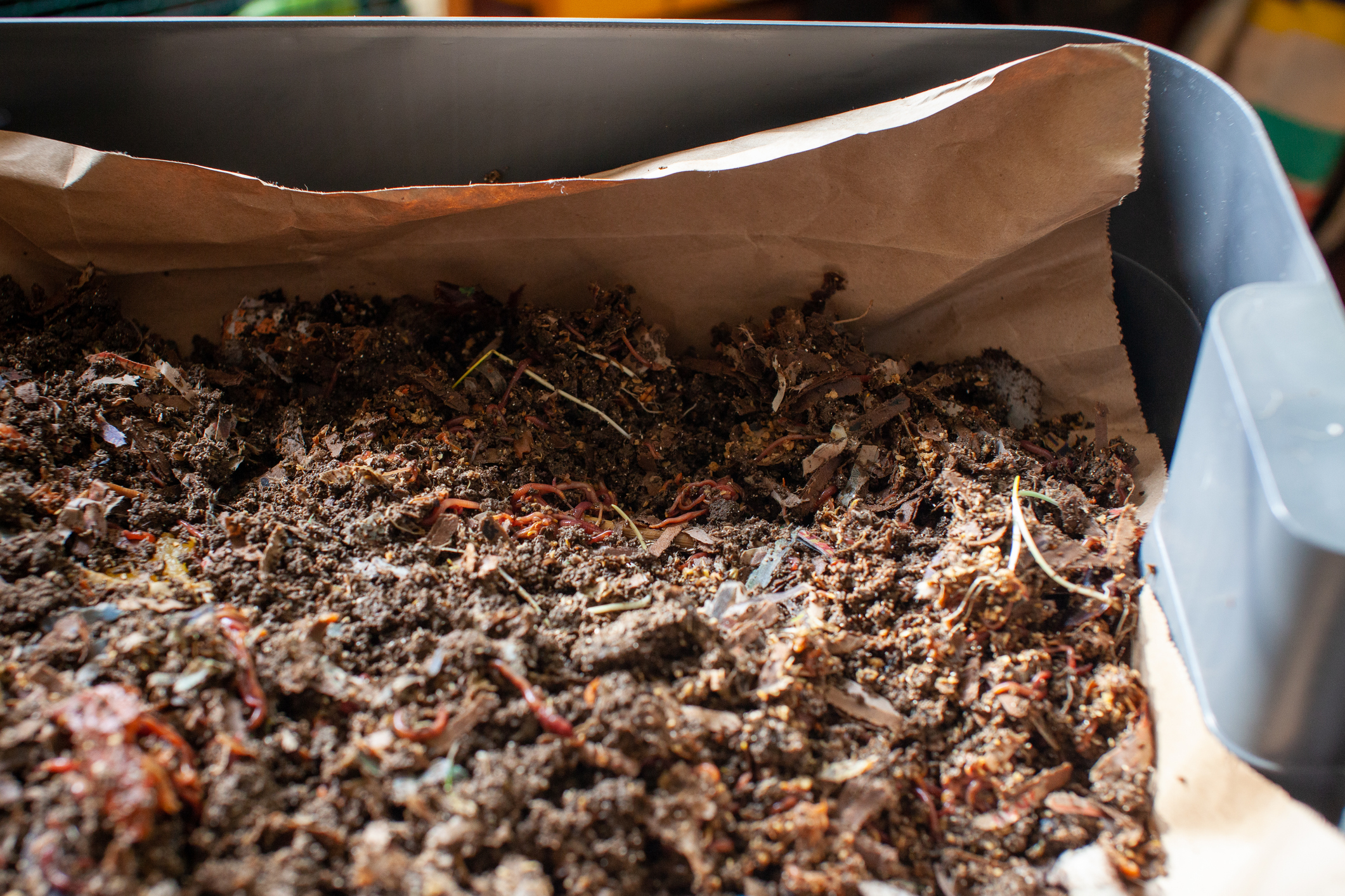 What's the difference between vermicomposting and composting?